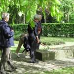 3-Blumen für das Gräberfeld der sowjetischen ZwangsarbeiterInnen.