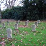 6-Gräber von kaum erwachsenen Soldaten des 1. Weltkrieges auf dem Friedhof in Werne